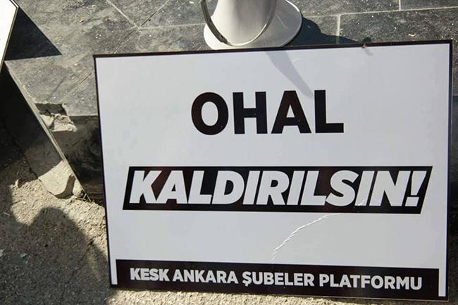 ohal_buhal_5